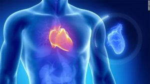 Heart Tonic oтзиви - форум, мнения, коментари