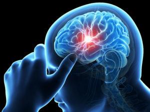 Premium Brain Booster capsule, ingredienten - hoe in te nemen?