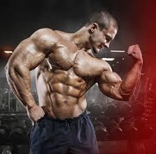 Musculin Active Polska - Producent, amazon