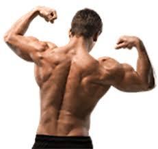 Musculin Active sklep. Allegro - gdzie kupic
