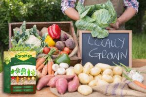 AgroMax îngrășământ organic, ingrediente, compoziţie, cum să o folosești, cum functioneazã, prospect