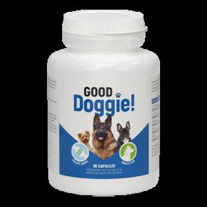 Good Doggie cápsulas - comentarios de usuarios actuales 2021 - ingredientes, cómo tomarlo, como funciona, opiniones, foro, precio, donde comprar, mercadona - España